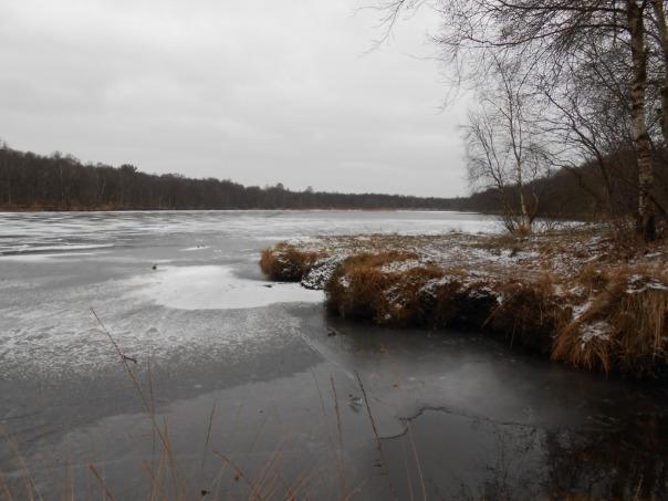 Königsmoor, Leer (Ostfriesland)
